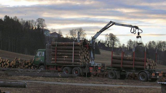 HERO Holzbau GmbH Zimmerei Güssing
